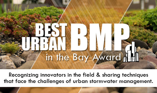 Vote for the Best Urban BMP in the Bay!