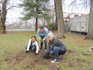 Tree Planting at West Edible Forest