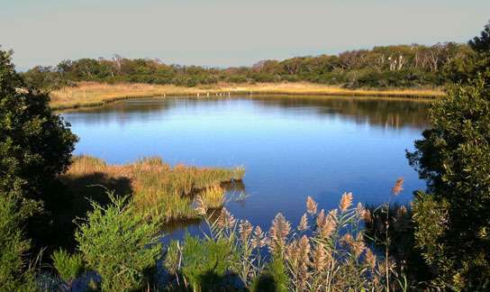 Constructed Wetlands and Regenerative Conveyance