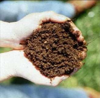 Design Specification No 4: Soil Compost Amendment