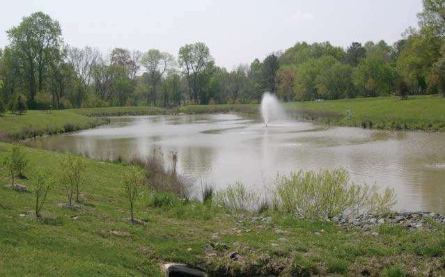 Stormwater Pond Management