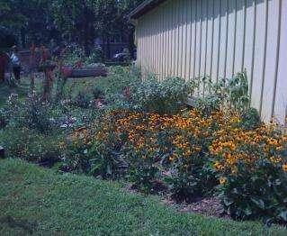 Becoming a Habitat Farmer
