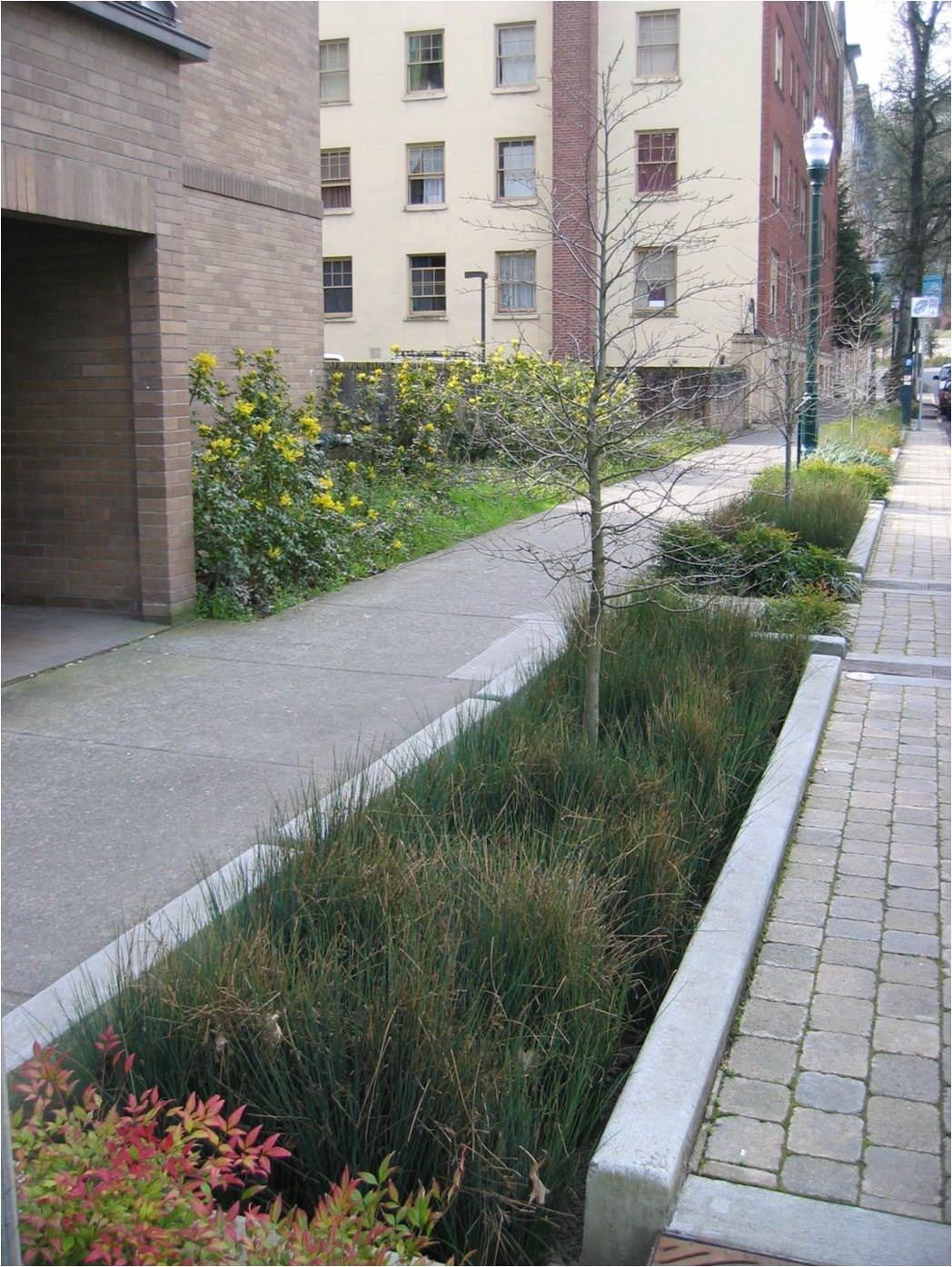 Green Infrastructure Opportunities that Arise During Municipal Operations