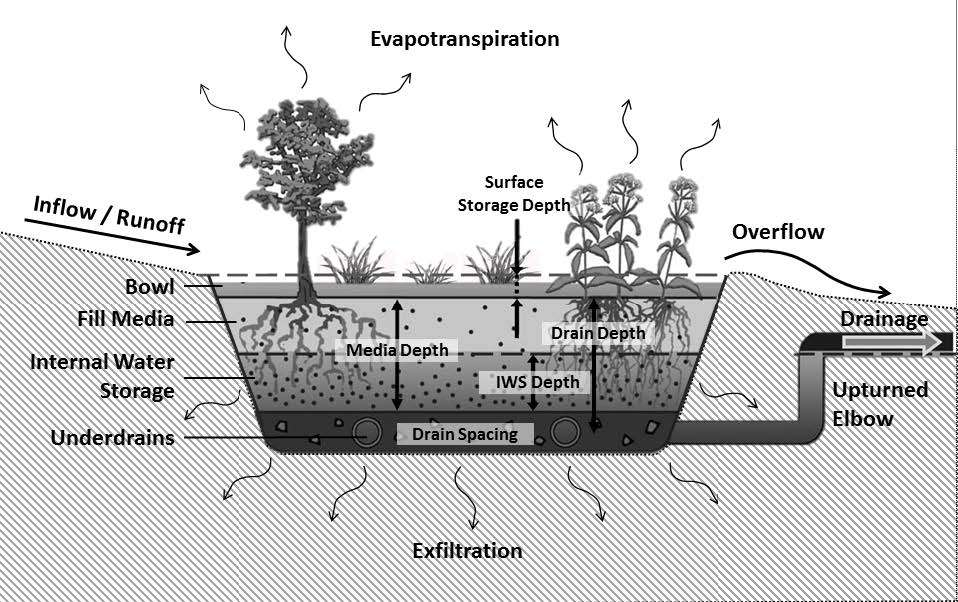 [Webcast] The Potential to Enhance Nutrient Removal in Bioretention and Sand Filters