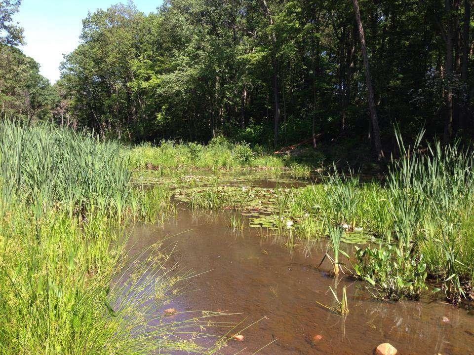 [Webcast] Stream Restoration Revisited