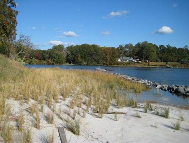Shoreline Management Fact Sheet