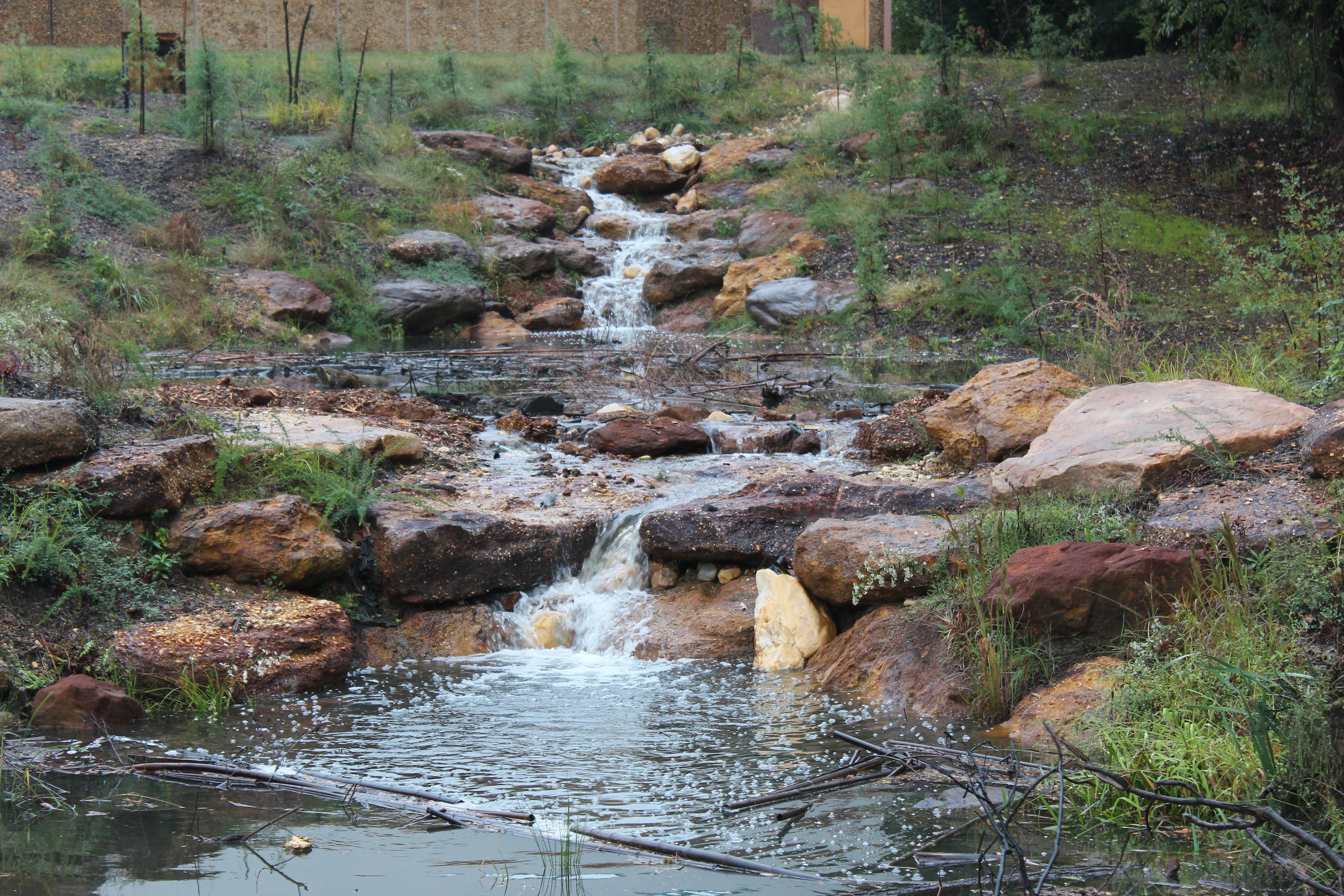 Survey of Stream Restoration Professionals