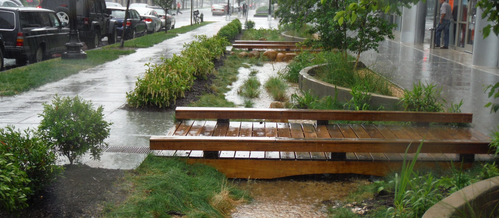 Stormwater Scoop: August 2019