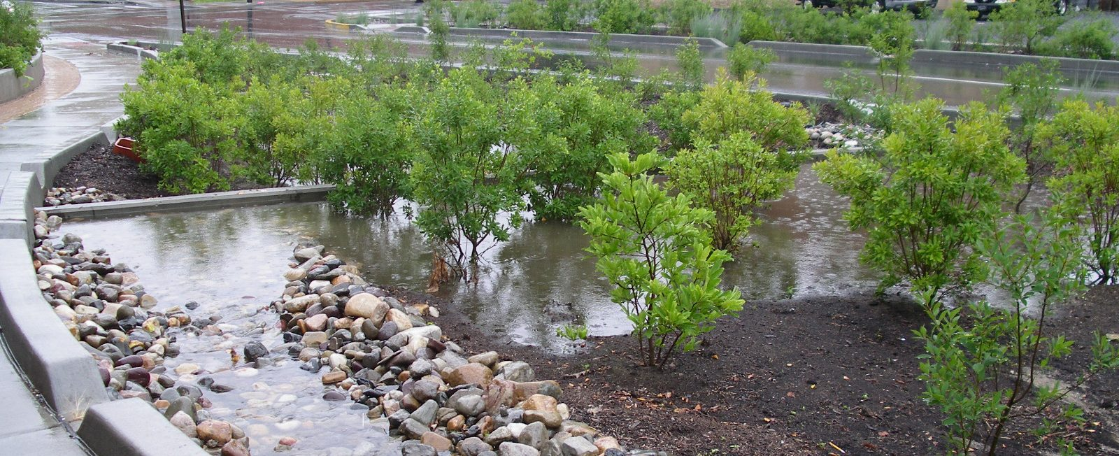 Technical Bulletin No 9: Nutrient Accounting Methods to Document Local Stormwater Load Reductions
