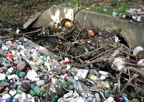 [Webcast] Behavior Change and Outreach Campaigns: Litter Reduction