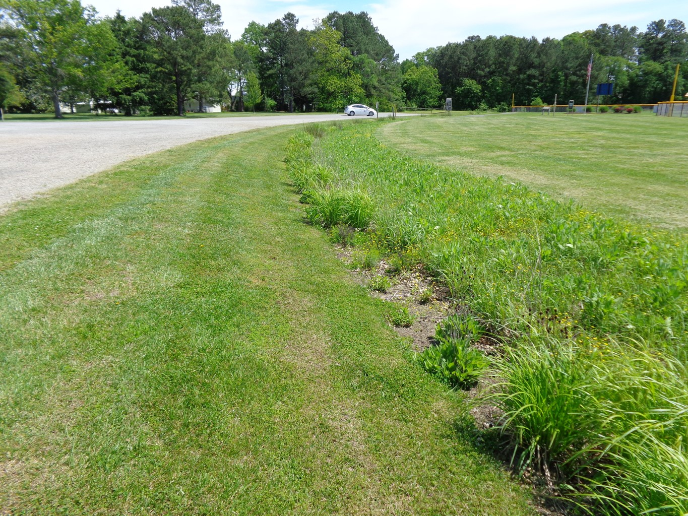 [Webcast] Roadside Ditch Management Guidance: Part 2