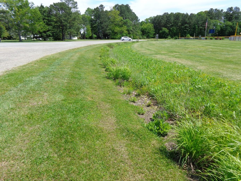 [Webcast] Roadside Ditch Management Guidance: Part 2