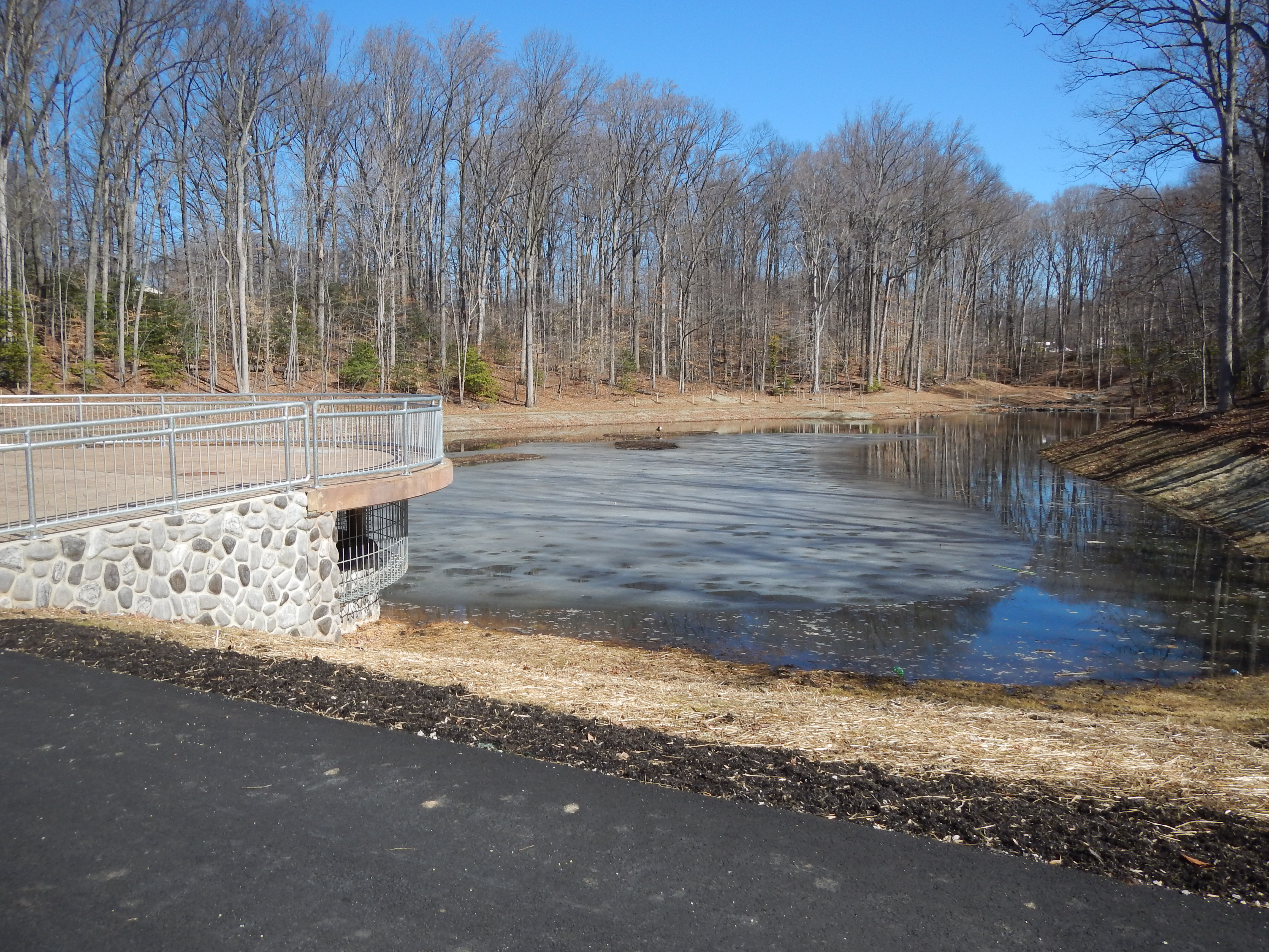 How to Stop Ponds from Releasing Phosphorus