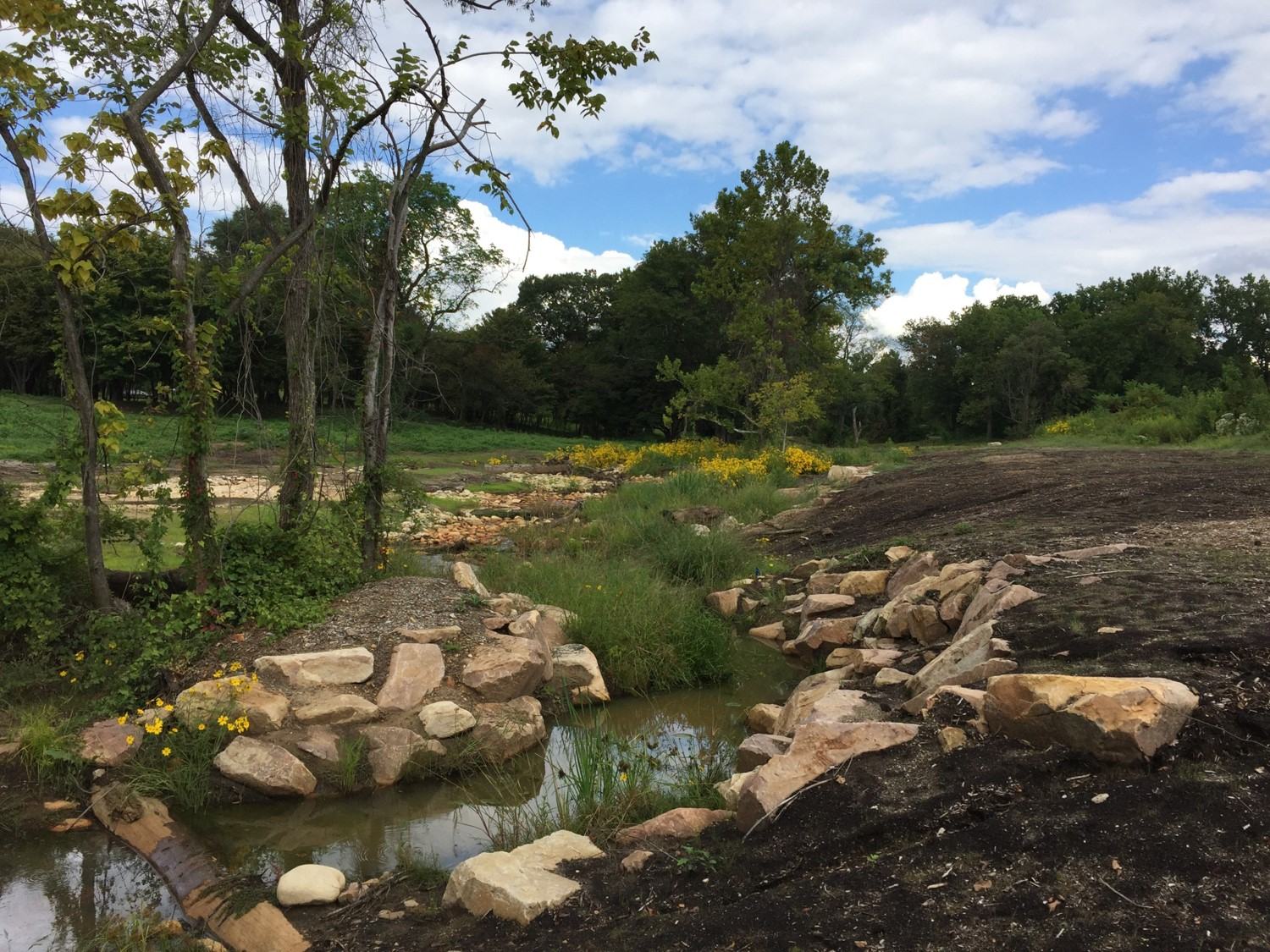 Finished and Un-finished Business in Stream Restoration